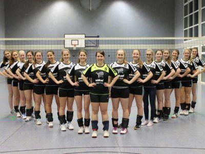 1-damenmannschaft-volleyball
